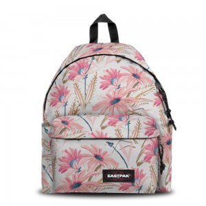 Eastpak Padded Pak'r® Whimsy Light [ Promotion Black Friday Soldes ]