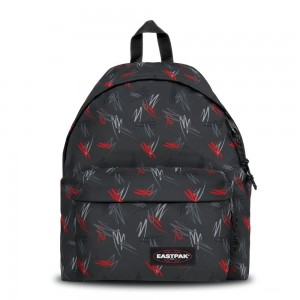 Eastpak Padded Pak'r® Scribble Black [ Promotion Black Friday Soldes ]