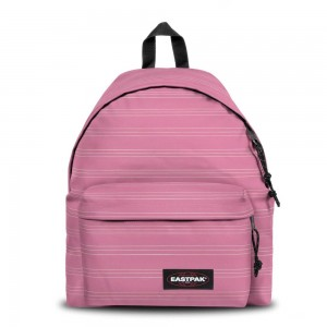 Eastpak Padded Pak'r® Stripe-it Marshmellow [ Promotion Black Friday Soldes ]