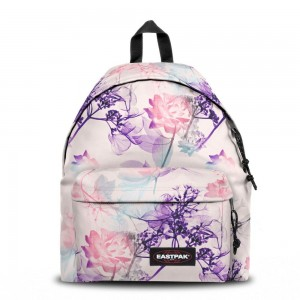Eastpak Padded Pak'r® Pink Ray [ Promotion Black Friday Soldes ]