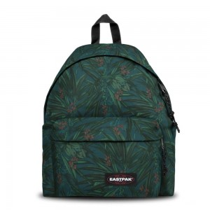 Eastpak Padded Pak'r® Brize Mel Dark [ Promotion Black Friday Soldes ]