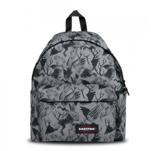 Eastpak Padded Pak'r® Dark Forest Grey [ Promotion Black Friday Soldes ]