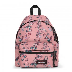 Eastpak Padded Zippl'r Romantic Pink [ Promotion Black Friday Soldes ]