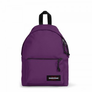 Eastpak Orbit Sleek'r Power Purple [ Promotion Black Friday Soldes ]