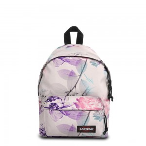 Eastpak Orbit XS Pink Ray [ Promotion Black Friday Soldes ]