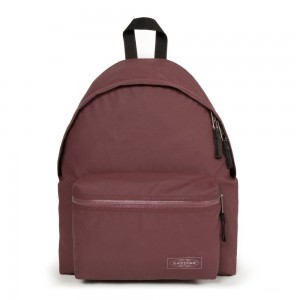 Eastpak Padded Pak'r® Topped Punch [ Promotion Black Friday Soldes ]