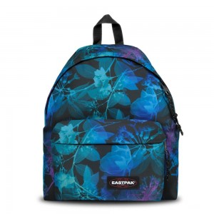 Eastpak Padded Pak'r® Dark Ray [ Promotion Black Friday Soldes ]