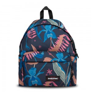 Eastpak Padded Pak'r® Whimsy Navy [ Promotion Black Friday Soldes ]
