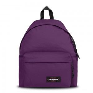 Eastpak Padded Pak'r® Power Purple | Pas Cher Jusqu'à 10% - 70%